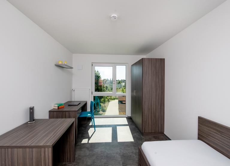 Blick in Dein gemütliches helles Apartment